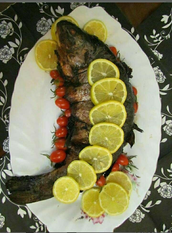 عکس ماهی قزل آلای شکم پر