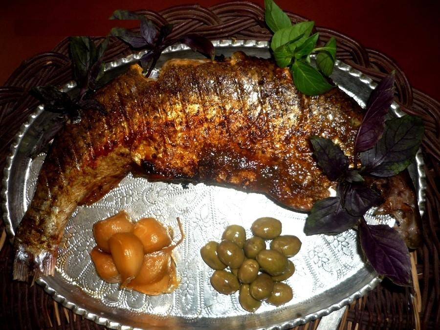 عکس ماهی شکم پر بدون فر