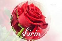 ❤❤   SHIRIN  ❤❤
