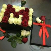 Maryam_bahar65