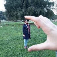 فاطمه علیزاده